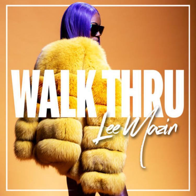 Lee Mazin – Walk Thru (Audio)
