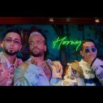 Maluma – Parce ft. Lenny Tavárez, & Justin Quiles
